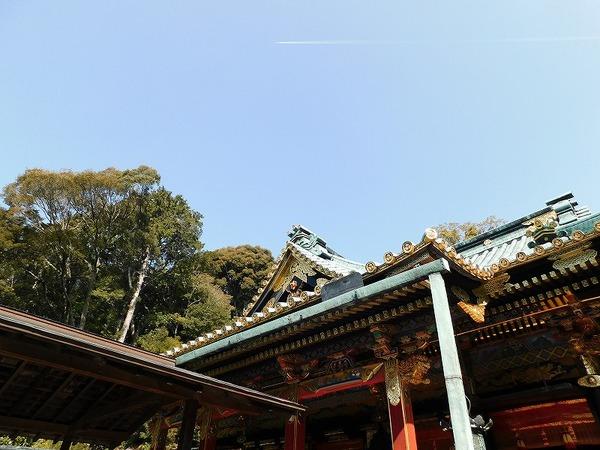 中静岡 (164).jpg