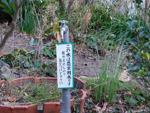 中静岡 (22).jpg
